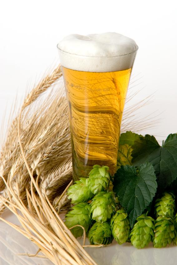 Gerstenmalz ist eine der wichtigsten Zutaten im Lieblingsgetränk der Deutschen: dem Bier.