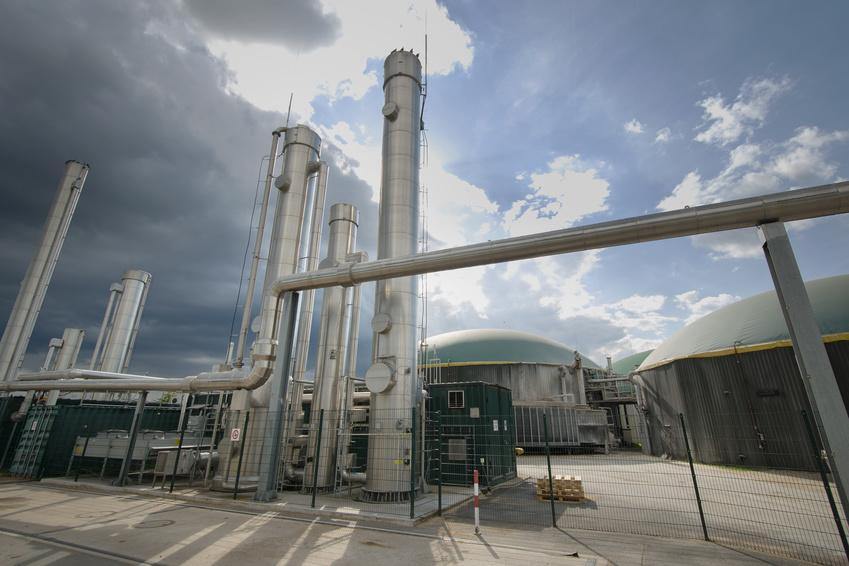 Cellulose ist ein wichtiger Rohstoff für zahlreiche industrielle Produkte. Nur wenn ihre Struktur genau bekannt ist, kann sie für industrielle Zwecke gezielt verändert werden. (Bildquelle: © Bertold Werkmann / Fotolia.com)