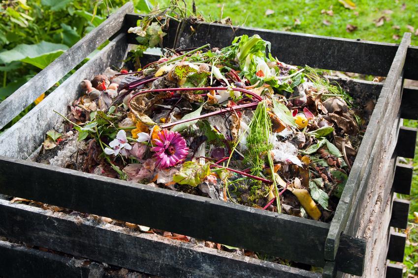 Können zukünftig zumindest Teile des Autos auf dem Komposthaufen landen?