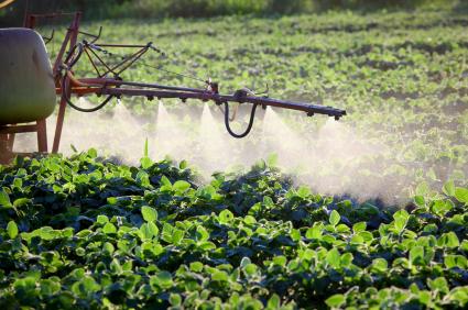 Klimaschutz fängt auf dem Acker an: z.B. beim sparsamen Einsatz von Düngemitteln.