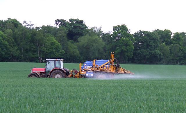 Würde es gelingen, die pflanzeneigene Verteidigung zu stärken, könnte möglicherweise der Pestizideinsatz reduziert werden.