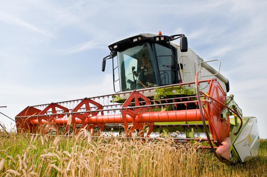 Getreide-Ernte. (Quelle: © iStockphoto.com/kadmy)