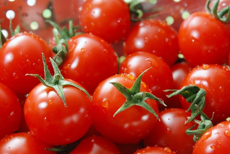 Die Tomate wird nicht nur wegen ihres Geschmacks, sondern auch wegen ihrer vielen gesunden Inhaltsstoffe geschätzt. (Bildquelle: © Johannes Schätzler/ pixelio.de)
