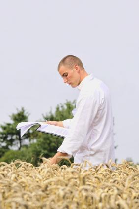 Angehender Agrar- und Landwirtschaftsingenieur auf dem Feld. (Quelle: © iStockphoto.com/sealine)