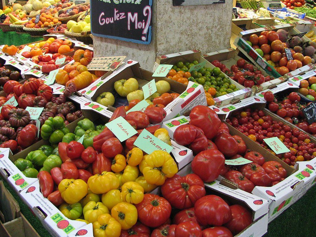 Rein wirtschaftlich gehört die Tomate zu den wichtigsten Nutzpflanzenarten der Welt. Aber auch kulturell ist sie aus den Küchen vieler Länder kaum mehr wegzudenken.