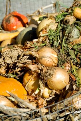 Biokraftstoff aus Kompost - vielleicht bald Realität (Quelle: © iStockphoto.com/ modesigns58 )