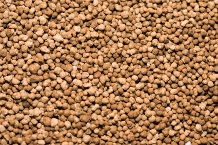 Ist der Phosphorgehalt in den Böden zu gering setzen Landwirte Phosphor-Düngemittel ein. In Entwicklungsländern fehlt dazu jedoch oft dafür das Geld.