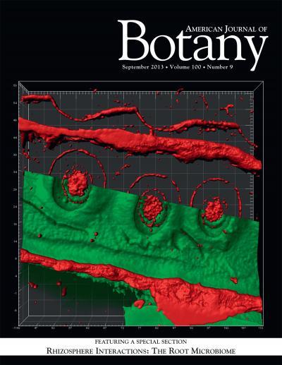 """Das ist das Cover der September-ausgabe der Fachzeitschrift American Journal of Botany mit dem Spezial """"Rhizosphere Interactions: The Root Microbiome""""."""