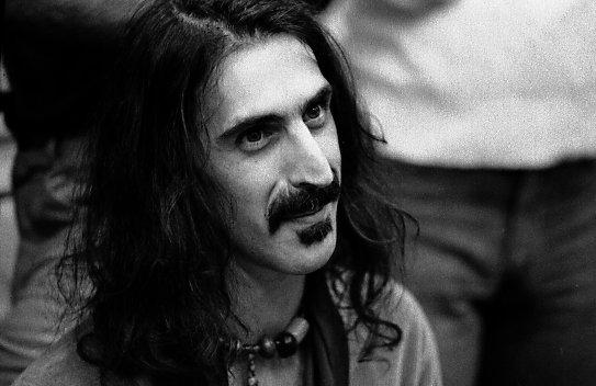 Das neu entdeckte Bakterium wurde nach dem Musiker Frank Zappa benannt: Propionibacterium acnes type Zappae.