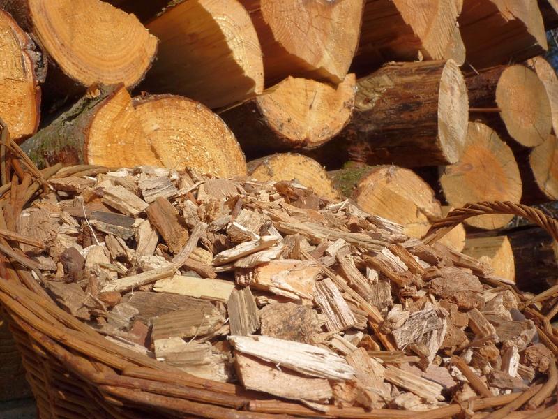 Holz ist ein nachwachsender Rohstoff, der vielfältig einsetzbar ist. (Quelle: © goldbany/Fotolia.com)