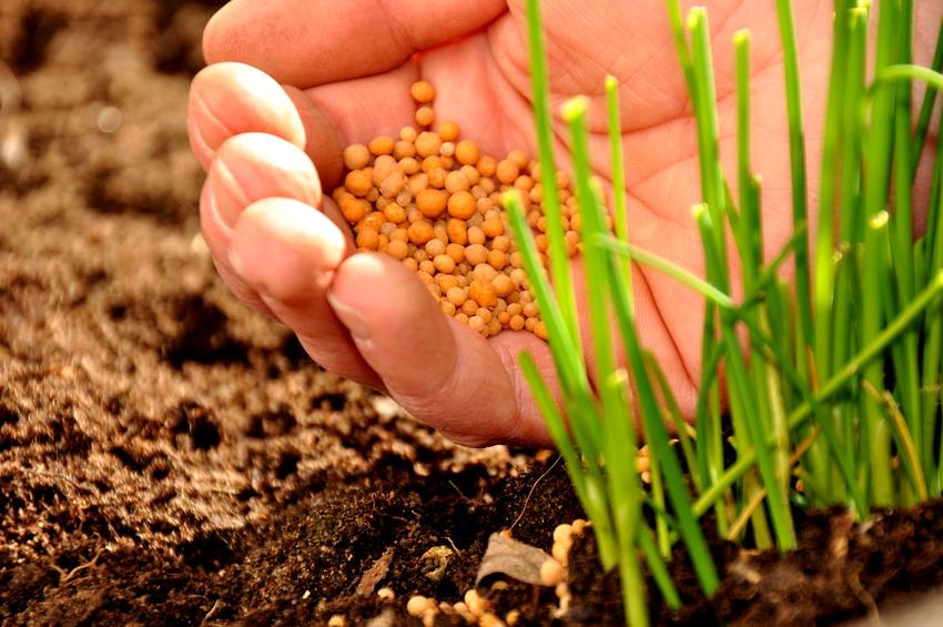 Mit dem Konsum von tierischen Produkten steigt der Phosphorverbrauch der Landwirtschaft (© Stefan Körber / Fotolia.com)