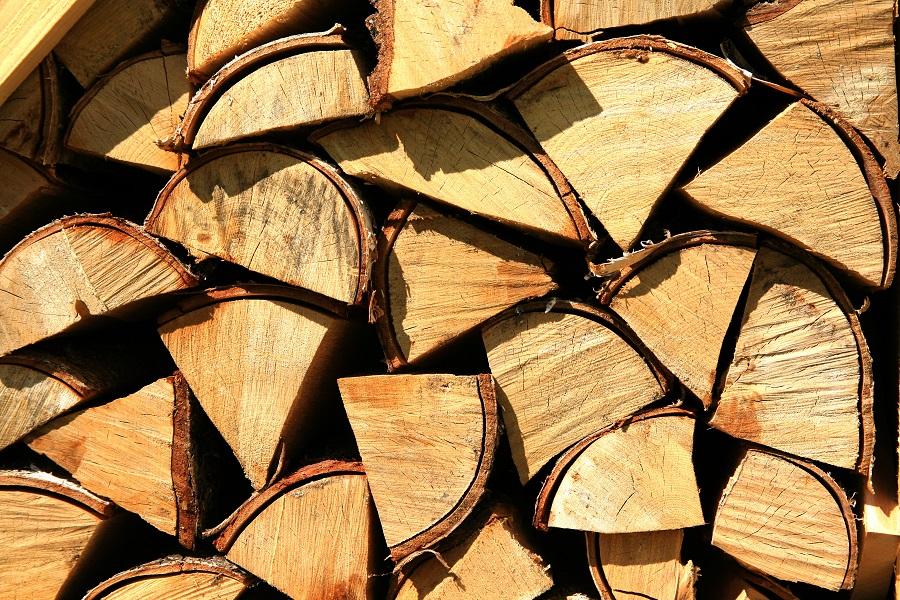Der Holzstoff Lignin verleiht Pflanzen Stabilität und Druckfestigkeit. Doch das extrem stabile Lignin behindert auch die energetische Nutzung von pflanzlichen Zellwänden. (Bildquelle: © Rainer Sturm/ pixelio.de)