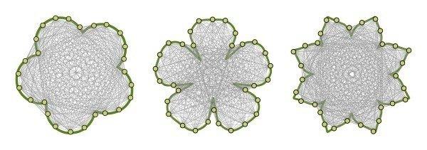 Darstellung von Sichtbarkeitsgraphen für verschiedene Blütenformen. Auf der Kontur (grün) sind Knoten in gleichmäßigen Abständen angeordnet, die über Kanten miteinander verbunden sind, wenn diese nicht die Kontur berühren oder schneiden. Durch den Zoom wird eine Blütenform detaillierter sichtbar.