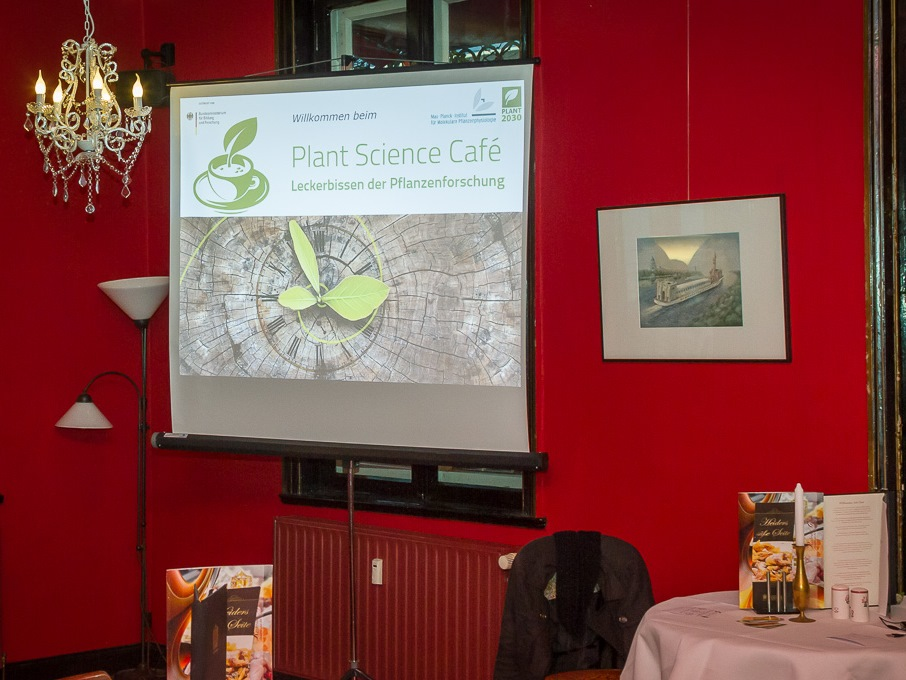 Am 10. Oktober 2016 fand das erste Plant Science Café in Potsdam statt. (Bildquelle: © Matthias Arlt)