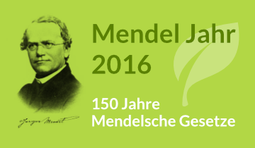Im Jahr 1866, also vor 150 Jahren, veröffentlichte der Naturforscher und Mönch Gregor Mendel seine drei Mendelschen Regeln. Daher wurde 2016 zum Mendel Jahr erklärt. Mehr erfahren über Gregor Mendel...