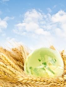 Das Ziel: Nachhaltige Landwirtschaft. (Quelle: © iStockphoto.com/ FredFroese)