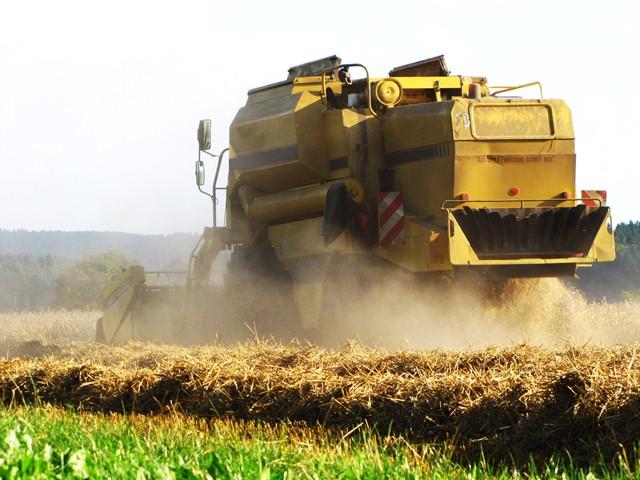 In Deutschland nimmt der Anbau von Energiepflanzen seit Jahren zu. Dadurch steigt die Flächenkonkurrenz zur Nahrungsmittelproduktion.