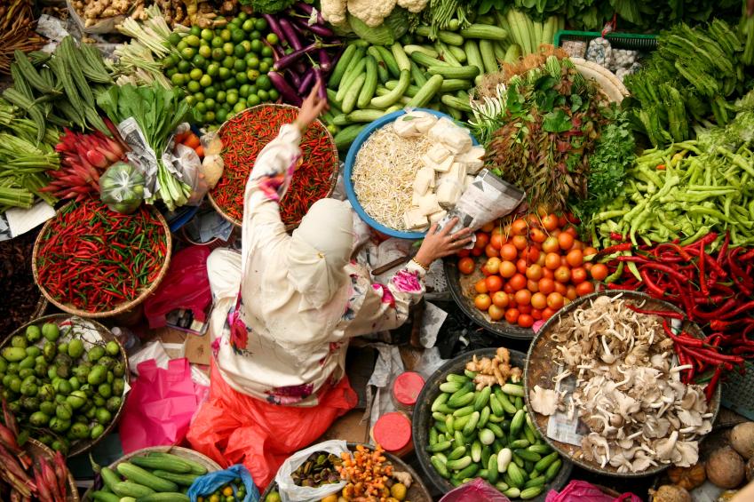 """Staaten, die sich innerhalb eines der 23 Zentren der Diversität befinden, greifen deutlich seltener auf """"fremde"""" Nahrungsmittel zurück."""