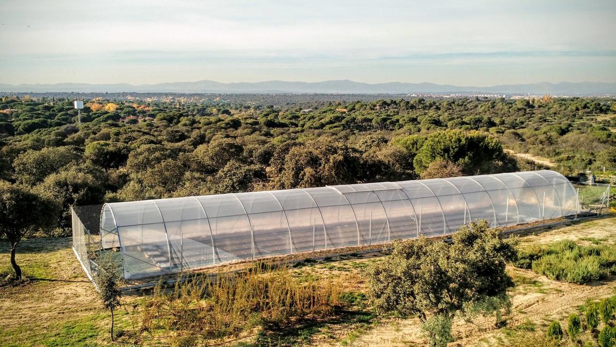Luftbild des Versuchsgeländes in Madrid (Spanien).