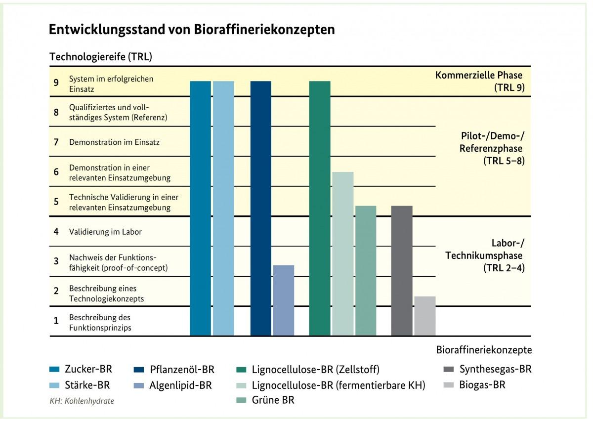 Die verschiedenen Bioraffineriekonzepte stehen auf unterschiedlichen Entwicklungsstufen. (Quelle: © FNR)