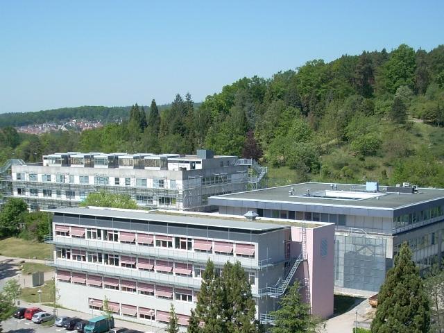 Zentrum für Molekularbiologie der Pflanzen in Tübingen (Quelle: © ZMBP).