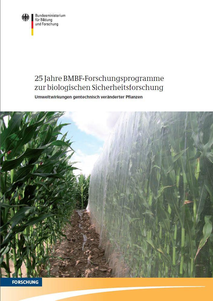"""Die Broschüre """"25 Jahre BMBF-Forschungsprogramme zur biologischen Sicherheitsforschung - Umweltwirkungen gentechnisch veränderter Pflanzen"""" fasst die wichtigsten Ergebnisse zusammen. Download"""