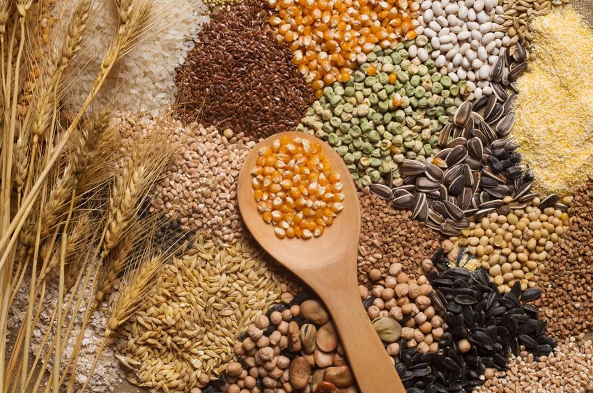 Eine Ernährung, die stark auf Lebensmitteln wie Weizen, Reis oder Soja basiert, stellt bei Kindern zwar Wachstum sicher, bei Erwachsenen aber kann eine solche Ernährung Übergewicht verursachen. (Quelle: © Aboikis/fotolia.com)