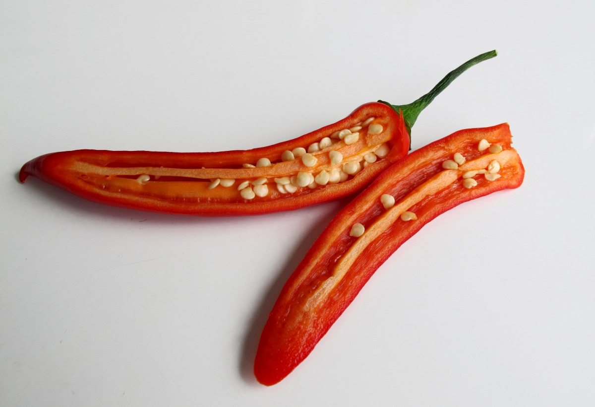 Die Schärfe von Chilischoten variiert, je nachdem wo sie wachsen. Grund dafür ist die Anpassung an gegebene Umweltbedingungen. (Quelle: © Joujou / www.pixelio.de)