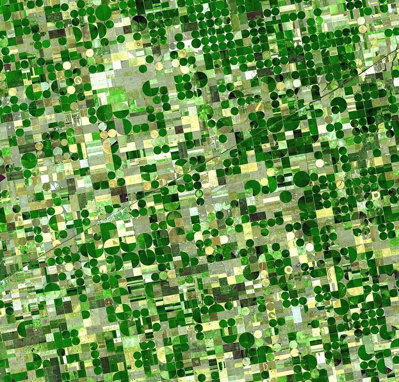 Das Satellitenbild von Kansas (USA) zeigt die verschiedenen Phasen der Fruchtfolge und verdeutlicht zugleich, wie stark die Landwirtschaft in die Natur eingreift und das Landschaftsbild prägt.
