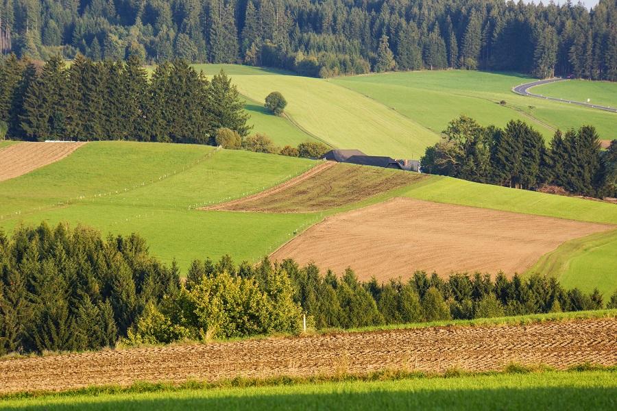 Im Jahr des Bodens wird deutlich: Die Frage, welche Landwirtschaft gepflegt wird, ist ohne Bezug zum Boden nicht zu beantworten. (Bildquelle: © Rainer Sturm/ pixelio.de)