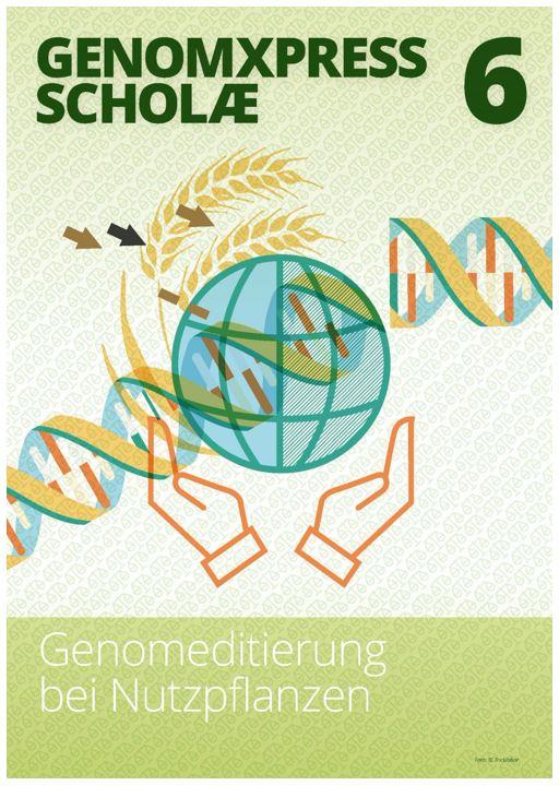 Der GENOMXPRESS SCHOLÆ bietet Unterrichtsmaterialien zu unterschiedlichen Schwerpunkten an.