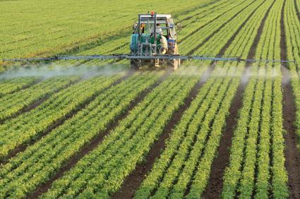 Pflanzenschutzmittel sind einer der Inputfaktoren, um die Stabilität von Erträgen zu sichern.