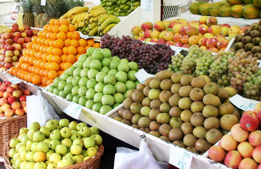 Welche Flächen brauchen wir für Ernährung und welche können wir für Naturschutz und stoffliche Nutzung bzw. Bioenergie bereitstellen?