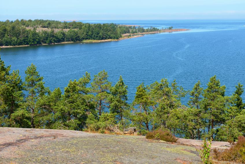 Bergketten oder andere geografischen Bedingungen, können Pflanzenpopulationen voneinander isolieren. Wie sich dies auf die Widerstandsfähigkeit gegenüber Pilzen auswirkt, haben Forscher auf der finnischen Inselgruppe Åland untersucht.