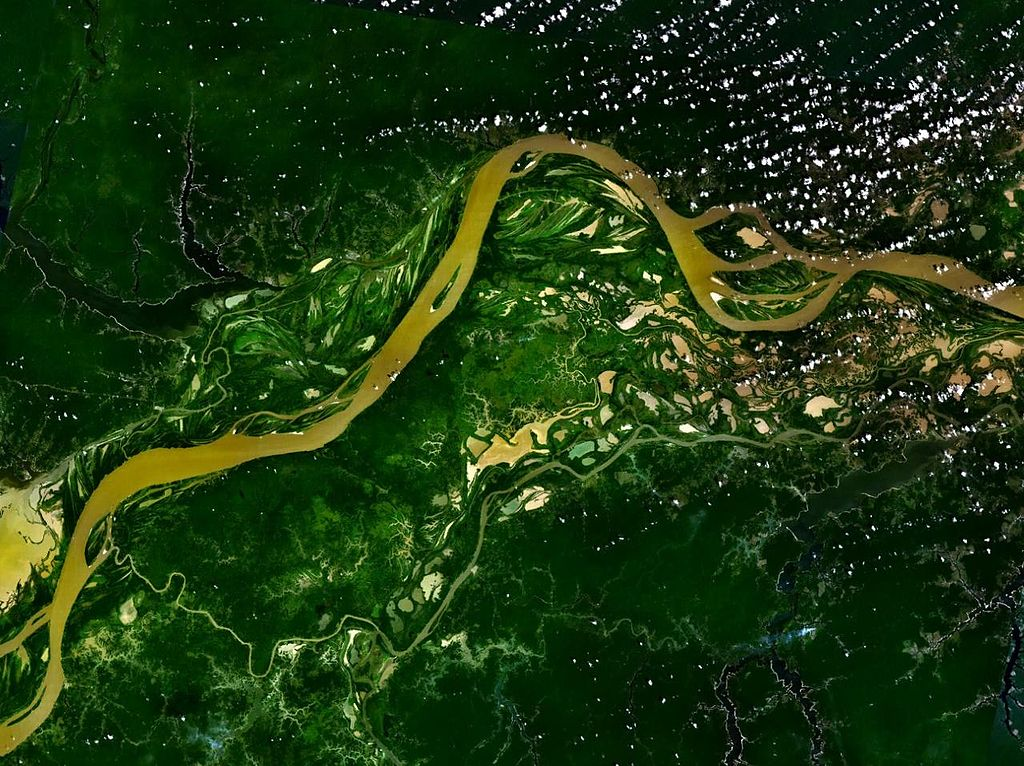 Der Amazonas-Regenwald stand jahrelang im Zentrum einer zum Teil hitzig geführten Debatte, die um die Frage kreiste, ob Licht oder Wasser sein Wachstum stärker beeinflusst.