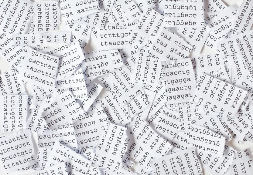 """Next-Generation-Sequencing-Geräte haben den Nachteil, dass nur kurze DNA-Abschnitte (""""reads"""") abgelesen werden können. (Bildquelle: © illarionova / Fotolia.com)"""