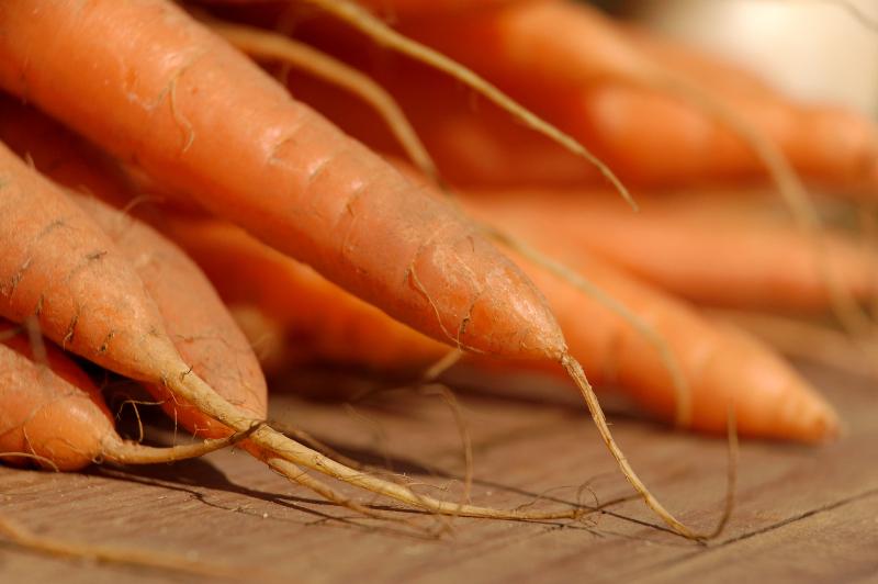Das orangene Gemüse wird aufgrund seiner vielen gesunden Nährstoffe, wie Vitamin C, Kalium und Karotin geschätzt. (Bildquelle:© Petra Bork/ pixelio.de)