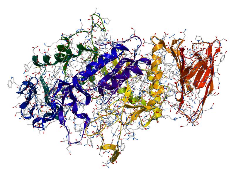 Enzymstruktur (hier eine Alpha-Amylase): Um ein Enzym nachbauen zu können, wird vorher die Struktur ermittelt.