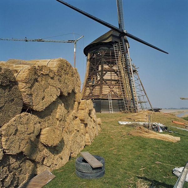 Traditionell wird Stroh zum Dachdecken von Reethäusern genutzt.