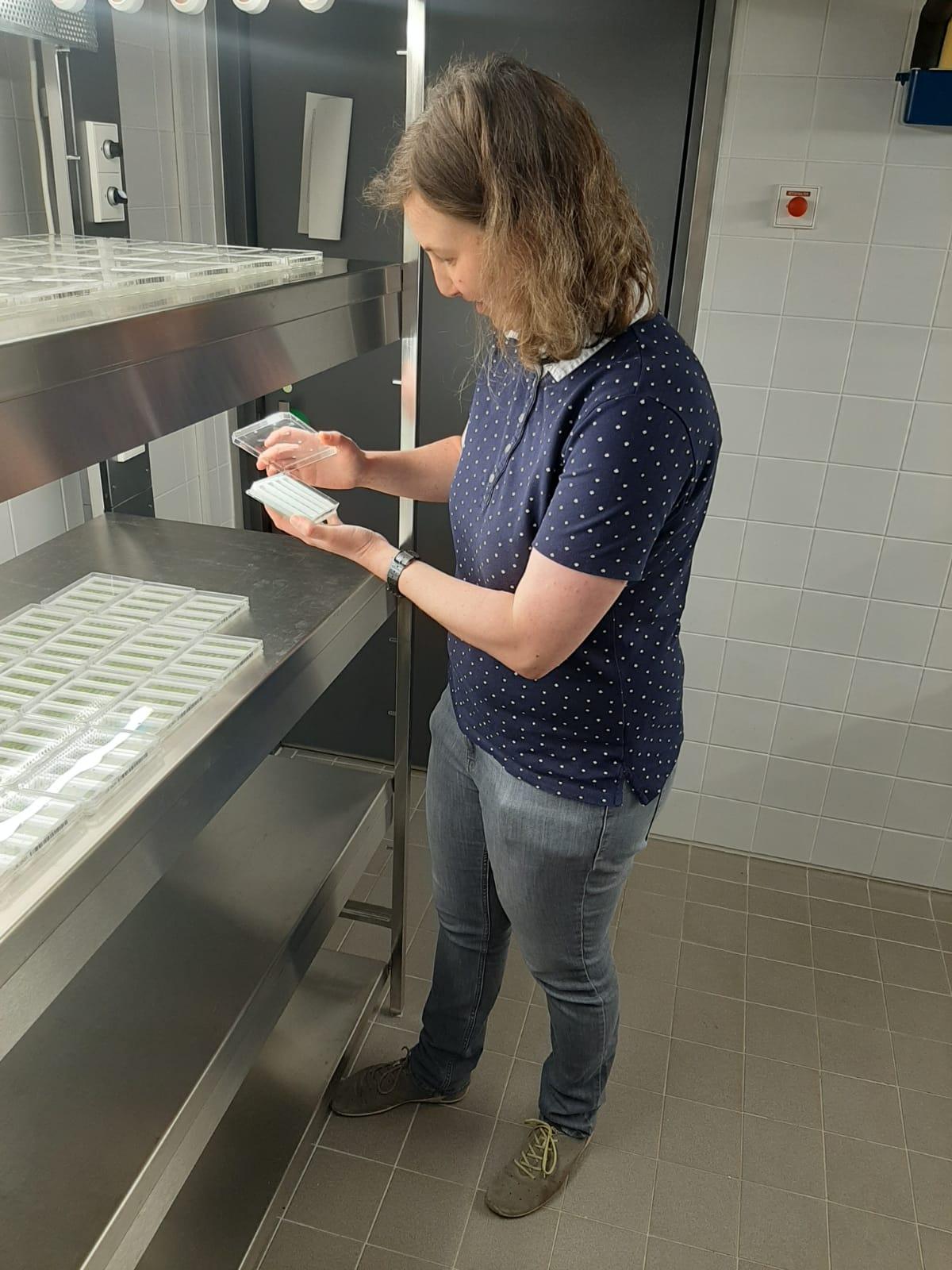 Neben dem Einsatz moderner Hochdurchsatztechnologien fällt auch eine Menge Handarbeit im Labor an.