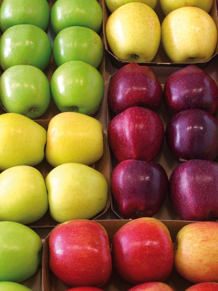 Biodiversität bei Äpfeln (© Firma Frutmac / PIXELIO - www.pixelio.de)