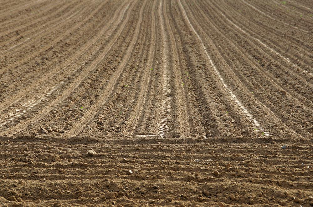 Frisch gepflügter Acker: Beim Pflügen wird der Ackerboden regelmäßig durch einen Pflug gewendet und belüftet. Beim Direktssaatverfahren wird auf pflügen verzichtet.