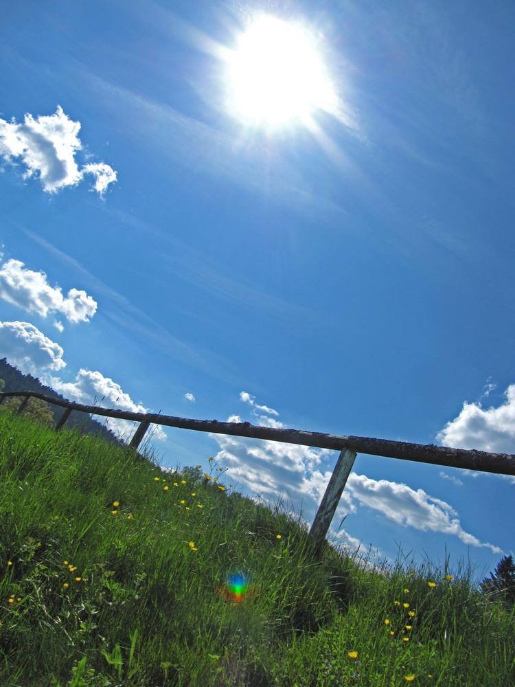 Pflanzen sind in der Lage aus das einfallende Sonnenlicht zu nutzen: Sie betreiben Photosynthese. Lichtenergie, Kohlendioxid (CO2) und Wasser werden so in Sauerstoff und Energie umgewandelt.