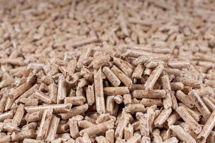 Biomasse aus Abfallprodukten: Hobel- und Sägespäne werden unter hohem Druck zu Pellets verdichtet.